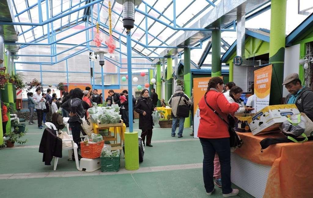 Los sábados de febrero habrá actividades en el Paseo Canto del Viento.
